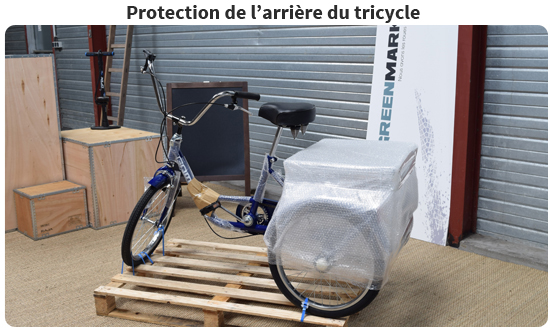 Tricycle adulte protection arrière