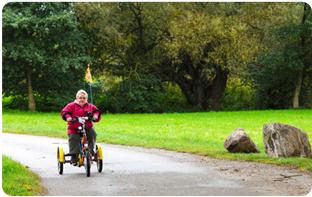 tricycle adulte confiance chute stabilité
