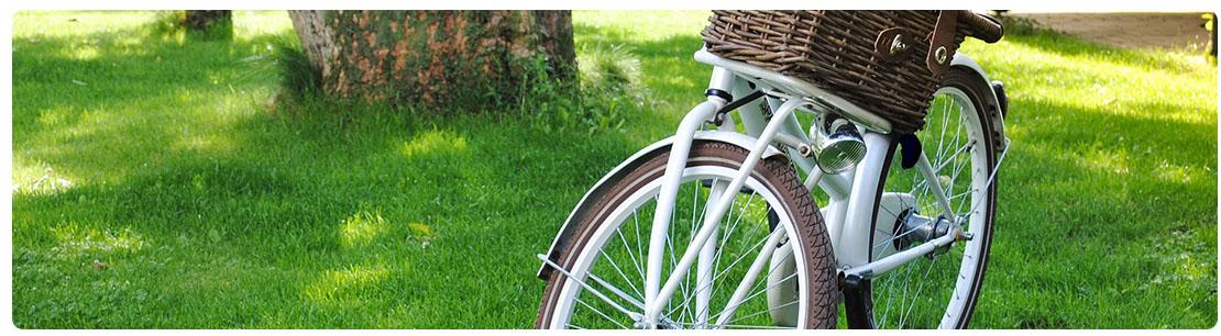 vélo de ville chic